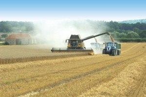Harvest-3